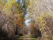 Image for Wabash Trace Trail