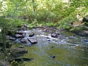 Image for Papermill Trail - Madison