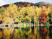 Image for Montreat Family Campground