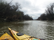 Great Trinity River Forest