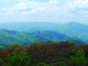 Image for Mt Pisgah