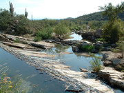 Image for Box Spring Trail