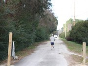 Image for West Ashley Greenway Running
