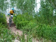 Image for Rim Trail