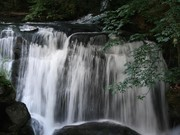 Image for Whatcom Falls Park