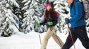 Image for Morton Arboretum - Cross Country Skiing