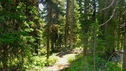 Image for Eagles Nest Trail