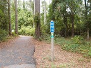 Image for Huntington Beach State Park